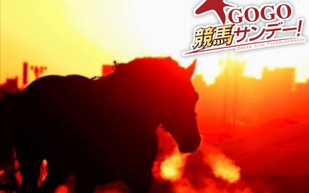 GOGO競馬サンデー!